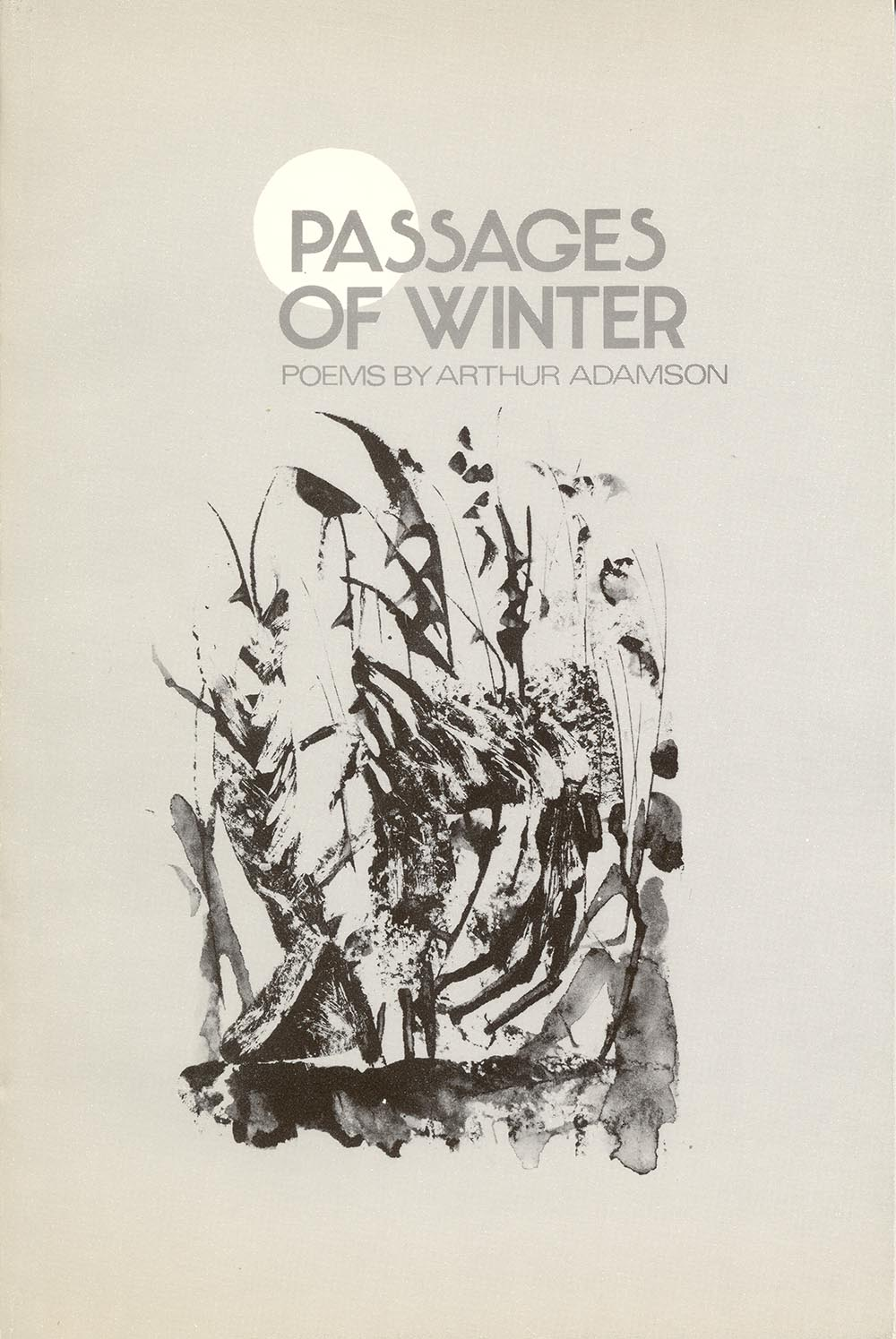 Passages of Winter by Arthur Adamson