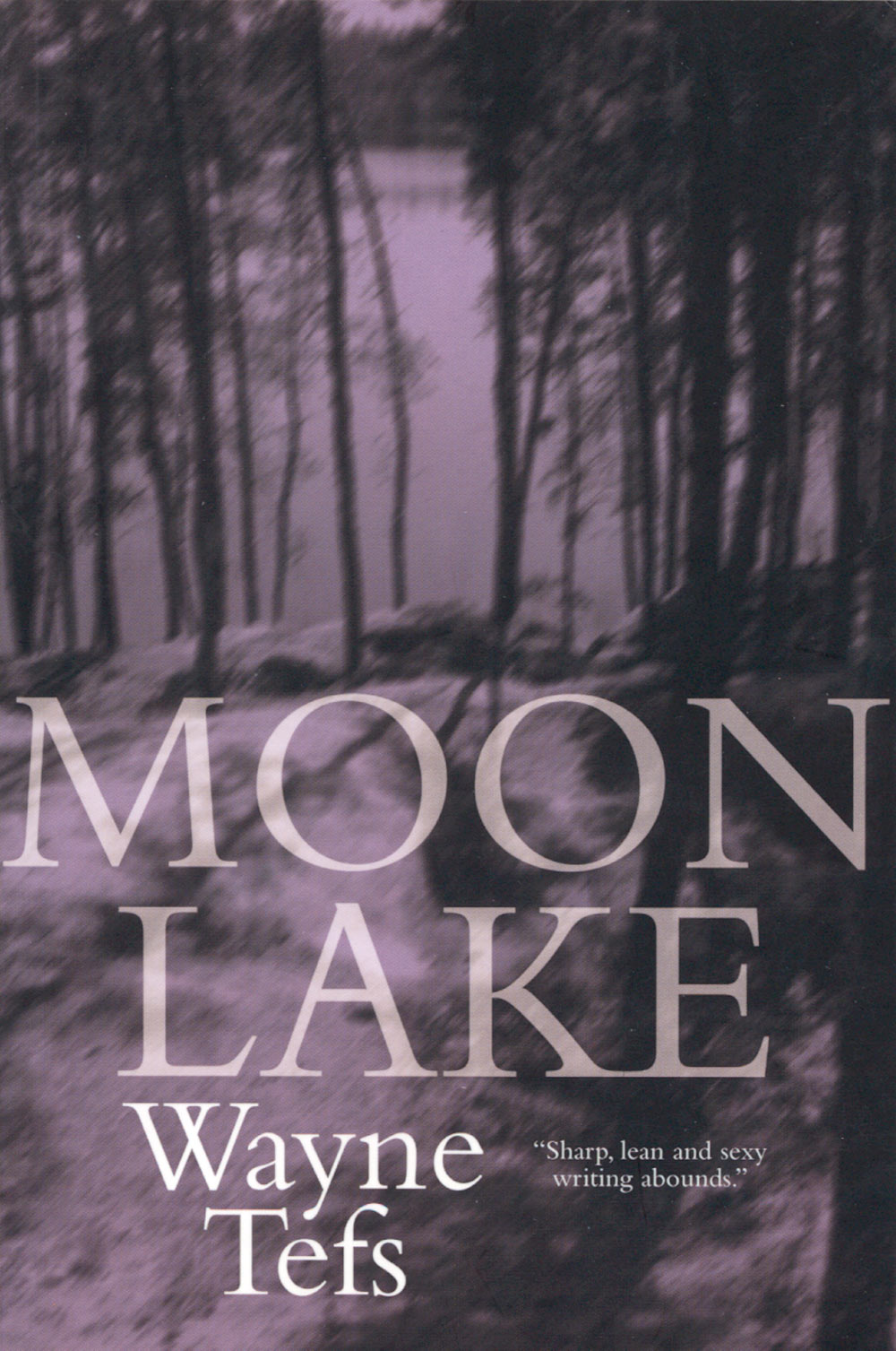 Moon Lake by Wayne Tefs