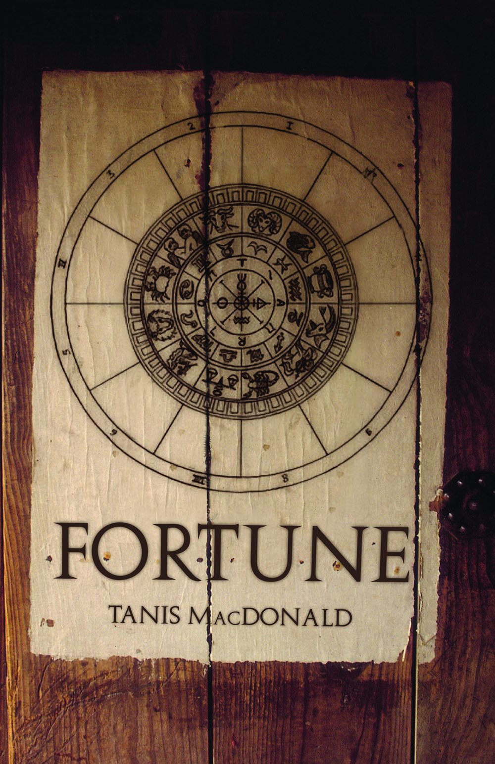 Fortune by Tanis MacDonald
