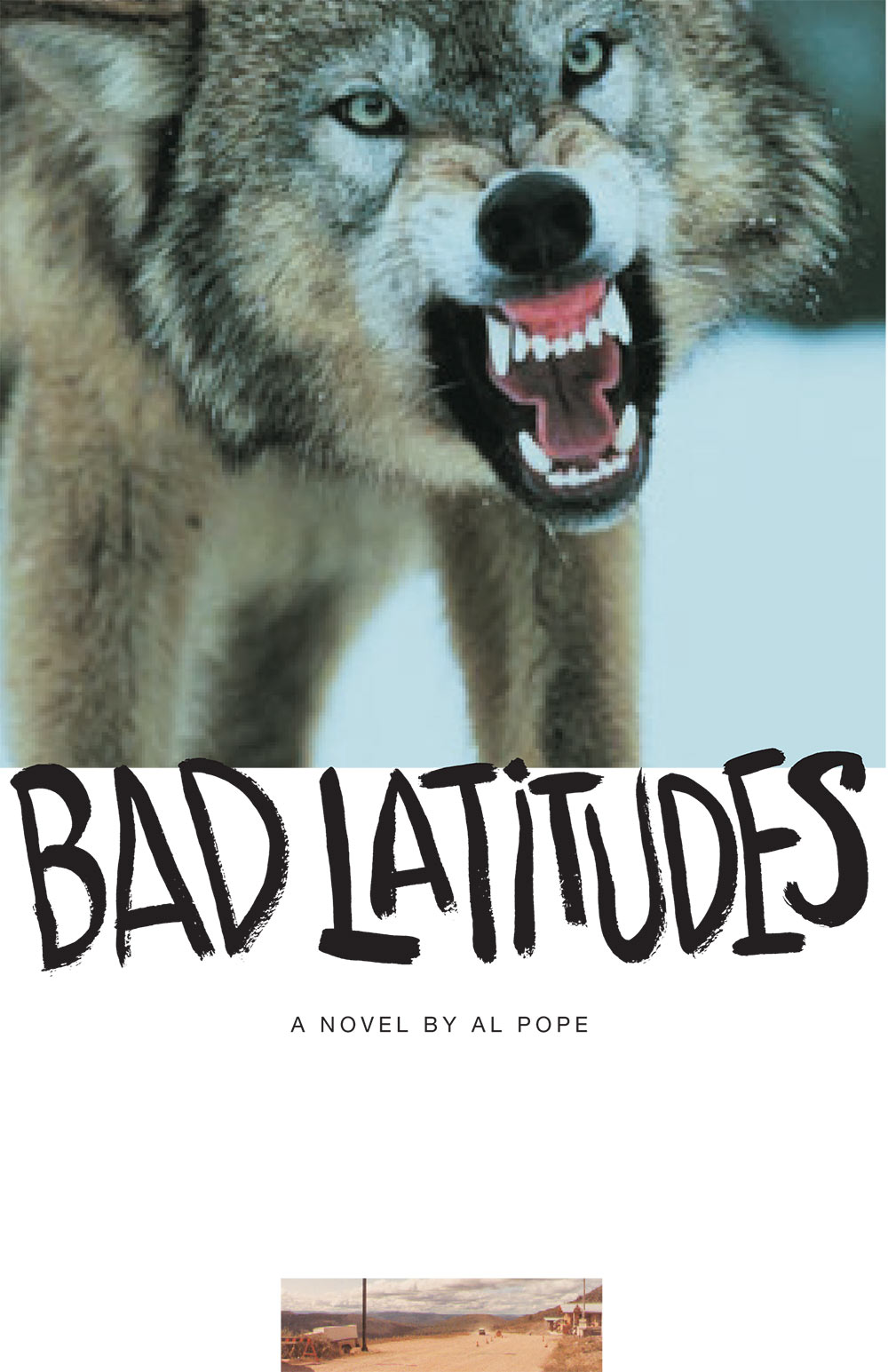 Bad Latitudes by Al Pope