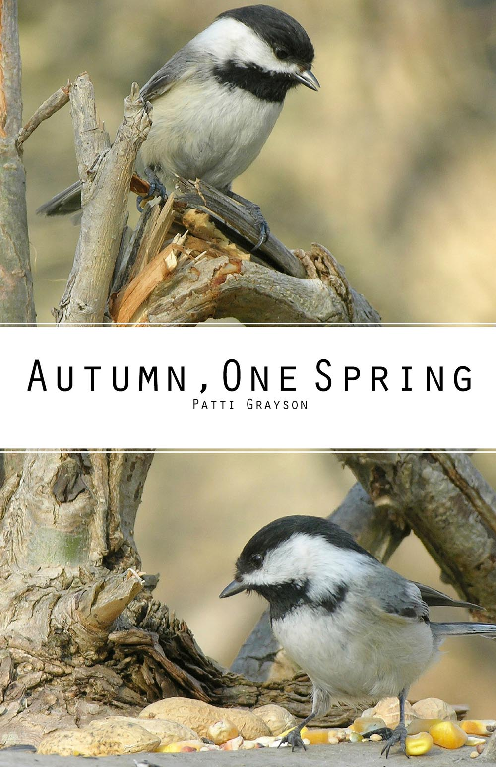 Autumn, One Spring by Patti Grayson