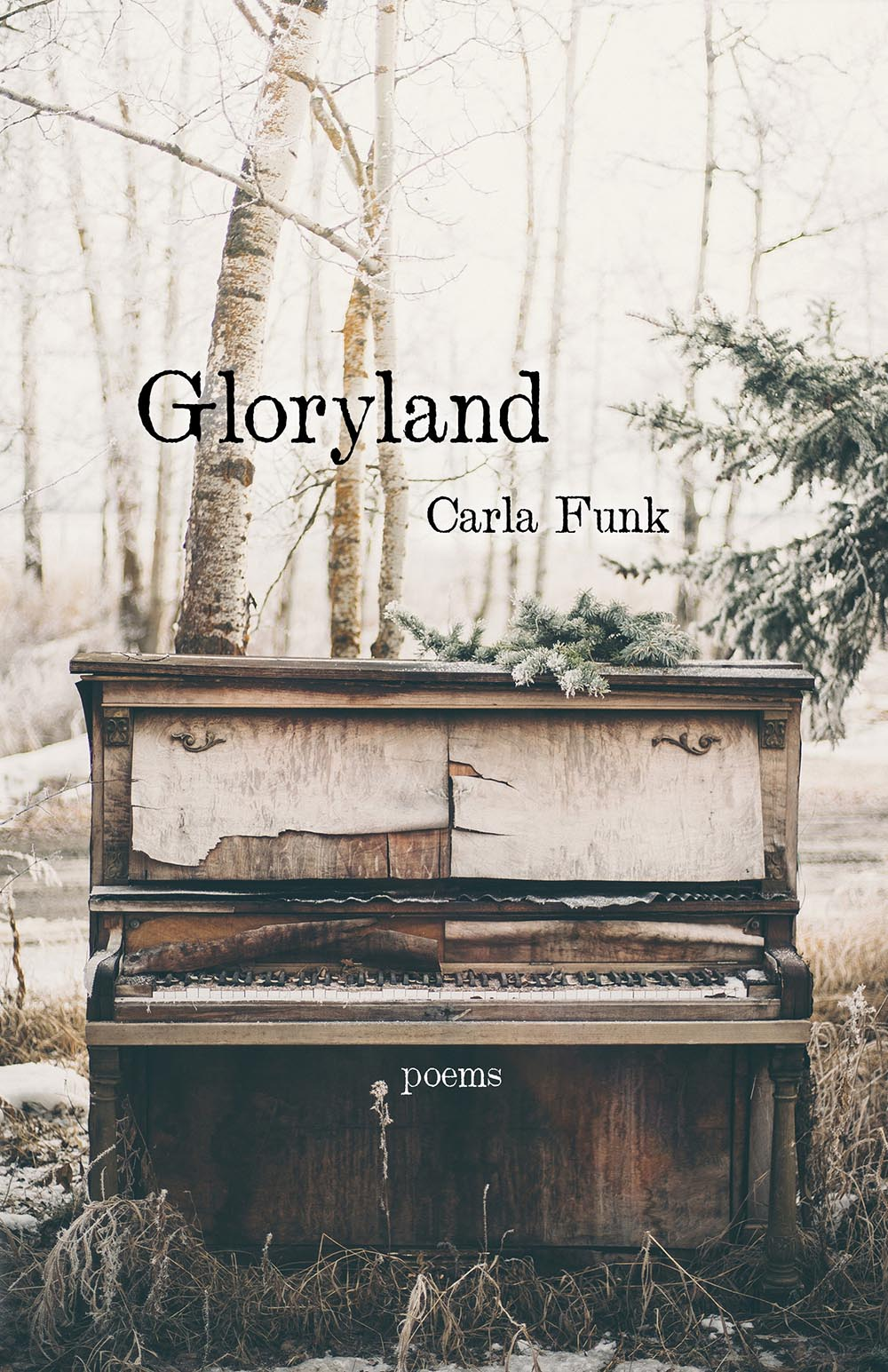 Gloryland by Carla Funk