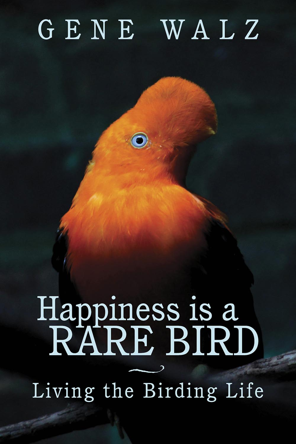 Happiness is a Rare Bird by Gene Walz