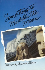 Something to Madden the Moon by Brenda Riches