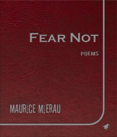 Fear Not by Maurice Mierau