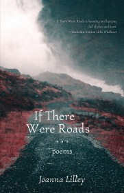 If There Were Roads by Joanna Lilley