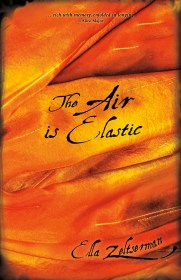 Cover of The Air is Elastic